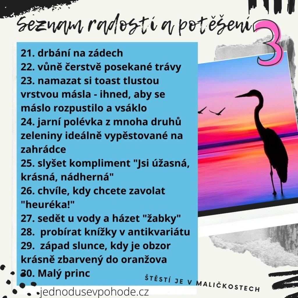seznam radostí a potěšení 3