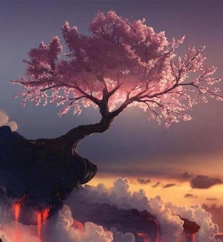 kořeny života