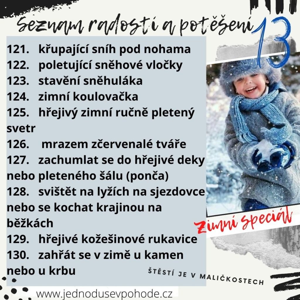 Seznam radostí a potěšení 13